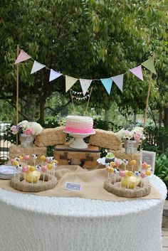 Vintage Girly Western Petting Zoo Birthday Party Ideas   Photo 2 of 42   Catch My Party