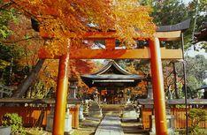 The Best Shinto Shrines in Kyoto