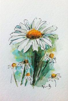 Daisy Watercolour by Jill Hsieh Buy Daisy, Watercolour by Jill Hsieh on Artfinder. Discover thousands of other original paintings, prints, sculptures and photography from independent artists. Daisy Drawing, Daisy Painting, Painting & Drawing, Drawing Flowers, Body Painting, Pen And Watercolor, Watercolor Flowers, Watercolor Sunflower, Watercolor Daisy Tattoo