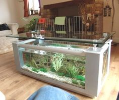 this week's style list | life aquatic, aquariums and fish tanks