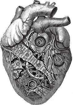 anatomical heart tattoo red and blue Tatoo Steampunk, Steampunk Drawing, Steampunk Heart, Design Tattoo, Heart Tattoo Designs, Cool Drawings, Drawing Sketches, Tribal Sleeve Tattoos, Tattoos Skull