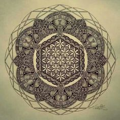 LOVE the detail and the mandala effect  Flower of life mandala