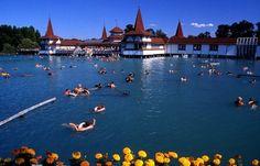 Le Lac Heviz en Hongrie est le lac thermal le plus large du monde Beautiful Sites, Beautiful Places To Visit, Amazing Places, Lonely Planet, Places Around The World, Around The Worlds, Beau Site, Best Spa, Once In A Lifetime