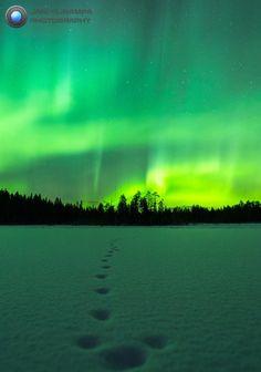 Last night. — in Rovaniemi