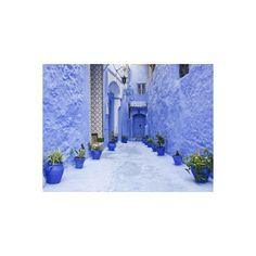 Art.com Blue Painted Alley Lined With Flower Pots Leading to Doorway,... ($35) ❤ liked on Polyvore featuring home, home decor, wall art, photography posters, blue home accessories, moroccan wall art, blue wall art and blue flower pots