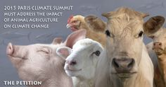 More signatures needed 2015 UN Climate Conference must address the impact of animal agriculture on climate change