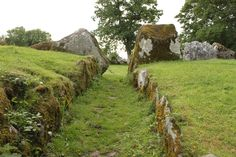 Holy Wells | Grange Stone Circle | Lough Gur | Limerick County | Ireland |