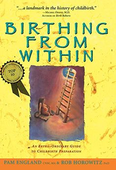 Birthing from Within: An Extra-Ordinary Guide to Childbir...
