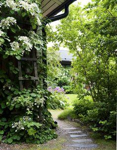 Puutarhurin oma puutarha