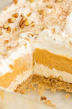 Instead of pumpkin pie this fall (or Thanksgiving!), try this easy pumpkin delight dessert recipe instead! A homemade pecan and graham cracker mix forms a delicious crust that is topped with three layers of light and fluffy filling -- including cream cheese, pumpkin, pudding and Cool Whip. Pumpkin Delight Dessert Recipe, Pumpkin Cake Recipes, Pumpkin Dessert, Pumpkin Cheesecake, Cheesecake Recipes, Pumpkin Trifle, Pie Recipes, Cold Desserts, Homemade Desserts
