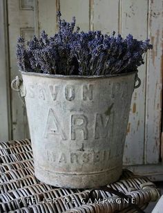 Zinc Bucket of Lavender French Lavender, Lavender Blue, Lavender Fields, Lavender Flowers, Galvanized Buckets, Galvanized Metal, Lavender Garden, Lavender Cottage, Malva