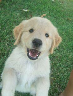 I ate mud and I'm still cute!