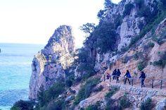 Sardinia wild  - via http://ift.tt/1zN1qff