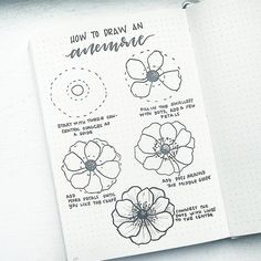 "3,106 Likes, 59 Comments - liz (@bonjournal_) on Instagram: ""How to draw an anemone flower! I'm taking requests for future #FlowerFriday tutorials. Comment…"""