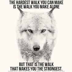 Wolf quotes and saying. The Wolf is a symbol of guardianship, instinct, loyalty, and spirit. The Wolf represents strong connection with instincts and intuition, high intelligence and communication – qualities we all should aspire to. Wolf Spirit, Spirit Animal, Motivational Videos, Inspirational Quotes, Motivational Speeches, Motivational Thoughts, Quotes Positive, Spiritual Quotes, Positive Thoughts