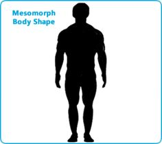 A guide to male and female body shapes find out what body type you have and discover what is the best diet and workout routines designed for you.