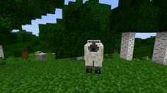 Minecraft PE 1.0.3