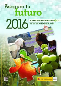 Enesa explica a una delegación de Georgia el funcionamiento del Sistema de Seguros Agrarios español