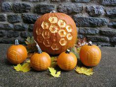 Catan pumpkins