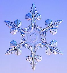 Beauty in a tiny snowflake