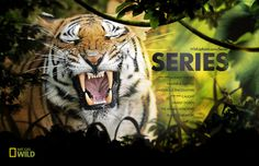 National Geographic WILD by Dann Petty, via Behance