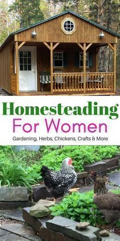 Homesteading For Women | Garden tips | Herb Gardening for beginners| Raising Chickens and more! #raisingchickensforbeginners #homesteadingforbeginners #gardeningforbeginners
