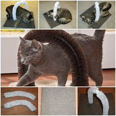 DIY Self Petting Stations for Cats