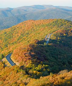 """America's Best Fall Color Drives"" by Travel + Leisure in October 2010 included Skyline Drive through Shenandoah National Park. In the fall, monitor www.Virginia.org/fall/ for foliage updates! via Virginia is for Lovers"