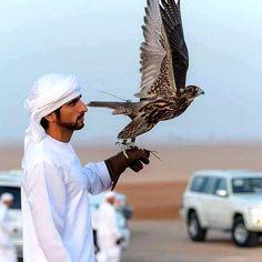 Hamdan bin Mohammed bin Rashid Al Maktoum, Vía: mohd_sultan_markhan Royal Family Pictures, Pictures Of Prince, Princess Haya, Dubai, Arab Swag, Handsome Arab Men, Royal Crowns, Celebrity Faces, Royal Prince