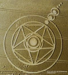 Crop Circle at Ark Lane (2), nr Stroud Green, Essex, United Kingdom. Reported 31st August 2014