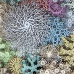 The Human Microbiome Reimagined as a Cut-Paper Coral Reef by Rogan Brown