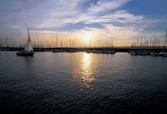 """See 203 photos and 9 tips from 1695 visitors to Neusiedler See. """"Located on the Austria-Hungarian border, Lake Neusiedl is the largest endorheic lake. Opera House, Europe, Beach, Travel, Outdoor, Pictures, Austria, Sailing, Road Trip Destinations"""