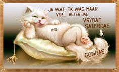 Afrikaanse Quotes, Goeie Nag, Goeie More, Day Wishes, Happy Weekend, Happy Quotes, Good Morning, Qoutes, Language