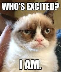 17 New Ideas For Funny Happy Birthday Humor Memes Grumpy Cat Happy Birthday Funny Cats, Happy Birthday Quotes For Friends, Funny Happy Birthday Pictures, Cat Birthday, Humor Birthday, Funny Pictures, Funny Grumpy Cat Memes, Funny Memes, Funny Quotes