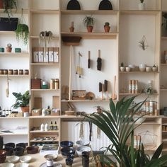 Dang I love the trunk of tree holding up a shelf. Easy way to bring nature into my home. Thanks - Centro Garden Lamore di fare 4 Birch Ply, A Shelf, New Shop, Shelving, Furniture Design, Architecture, Interior, Instagram Posts, House