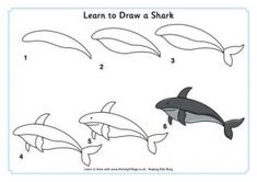 Learn to Draw a Shark This site has LOTS of learn to draw animals