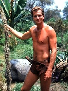 Ron Ely (21/06/1938), who portrayed Tarzan in 1966 in a made for TV series. I grew up with these episodes & feel he epitomized the Edgar Rice Burroughs character. Tarzan Actors, Tarzan Movie, Famous Geminis, Actors Male, Fantasy Movies, Vintage Tv, Hollywood Actor, Classic Tv, 1970s