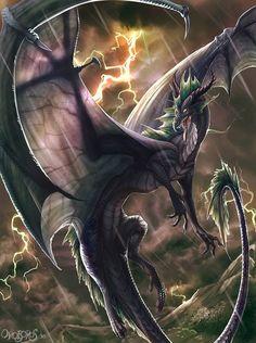Dragon noir <3 ****