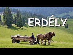 (16) Erdély! - YouTube Hungary, Horses, Film, Youtube, Animals, Instagram, Animais, Movies, Animales