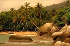 Playas del Magdalena