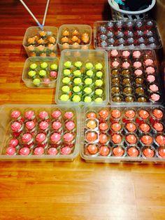 250 cupcakes