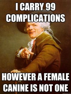 i carry 99 complications however a female canine is not one - Joseph Ducreux
