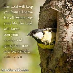 Psalm 121, Psalms, Bible Verses, Prayers, Lord, Heart, Spring, Prayer, Scripture Verses