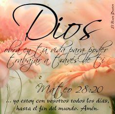 Mateo 28:20 enseñándoles que guarden todas las cosas que os he mandado; y he aquí yo estoy con vosotros todos los días, hasta el fin del mundo. Amén ♔