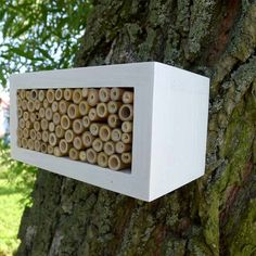 Lovely eye candy for both human and bee. white house for Solitary bee wild bee house by TheBirdOnTheTree
