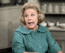Vivian Vance Lucy's equally funny partner in crime.