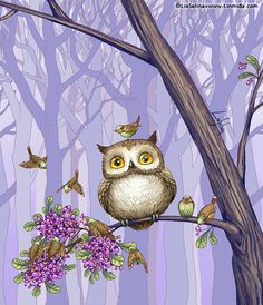 Little Owl ~