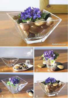 violets with pebbles