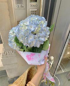 Flowers Nature, My Flower, Beautiful Flowers, Flower Drum, Spring Aesthetic, Flower Aesthetic, Tulips, Planting Flowers, Ideias Fashion