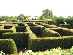 Complete list of mazes in australia